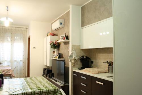 Vai alla scheda: Appartamento Vendita Varedo