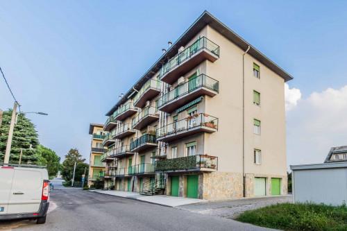 Vai alla scheda: Appartamento Vendita Gorla Minore