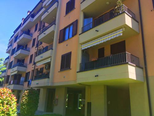 Vai alla scheda: Appartamento Affitto Mozzate