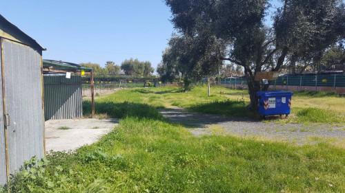 Vai alla scheda: Casa indipendente Vendita Albenga