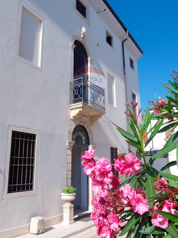 Appartamento in vendita a Pojana Maggiore, 4 locali, prezzo € 95.000 | CambioCasa.it