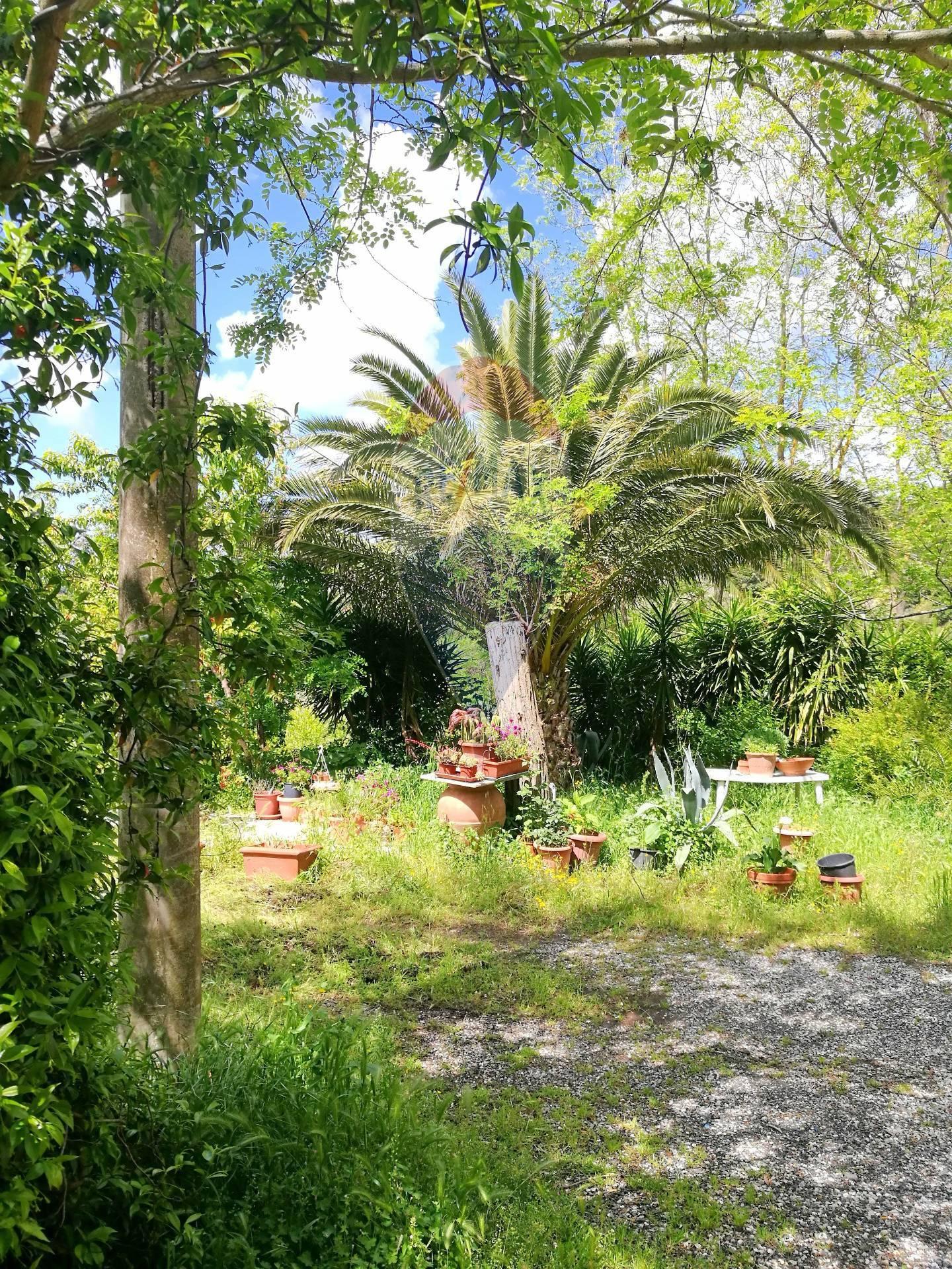 Appartamento in vendita a Riparbella, 4 locali, prezzo € 149.950 | CambioCasa.it