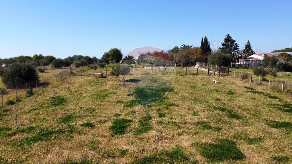 Terreno Agricolo in vendita a Pachino, 9999 locali, prezzo € 20.000 | CambioCasa.it