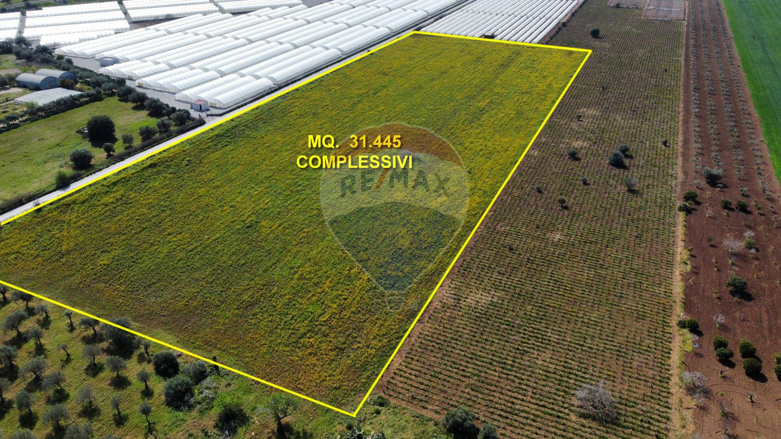 Terreno Agricolo in vendita a Noto, 9999 locali, prezzo € 230.000 | CambioCasa.it