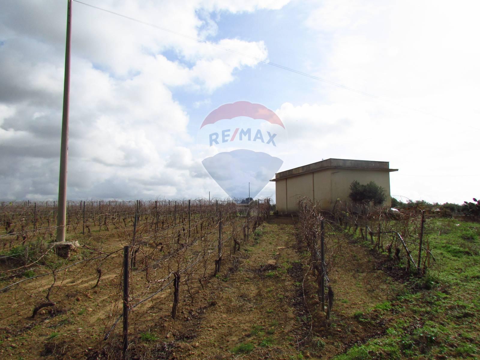 Terreno agricolo in vendita a Menfi (AG)