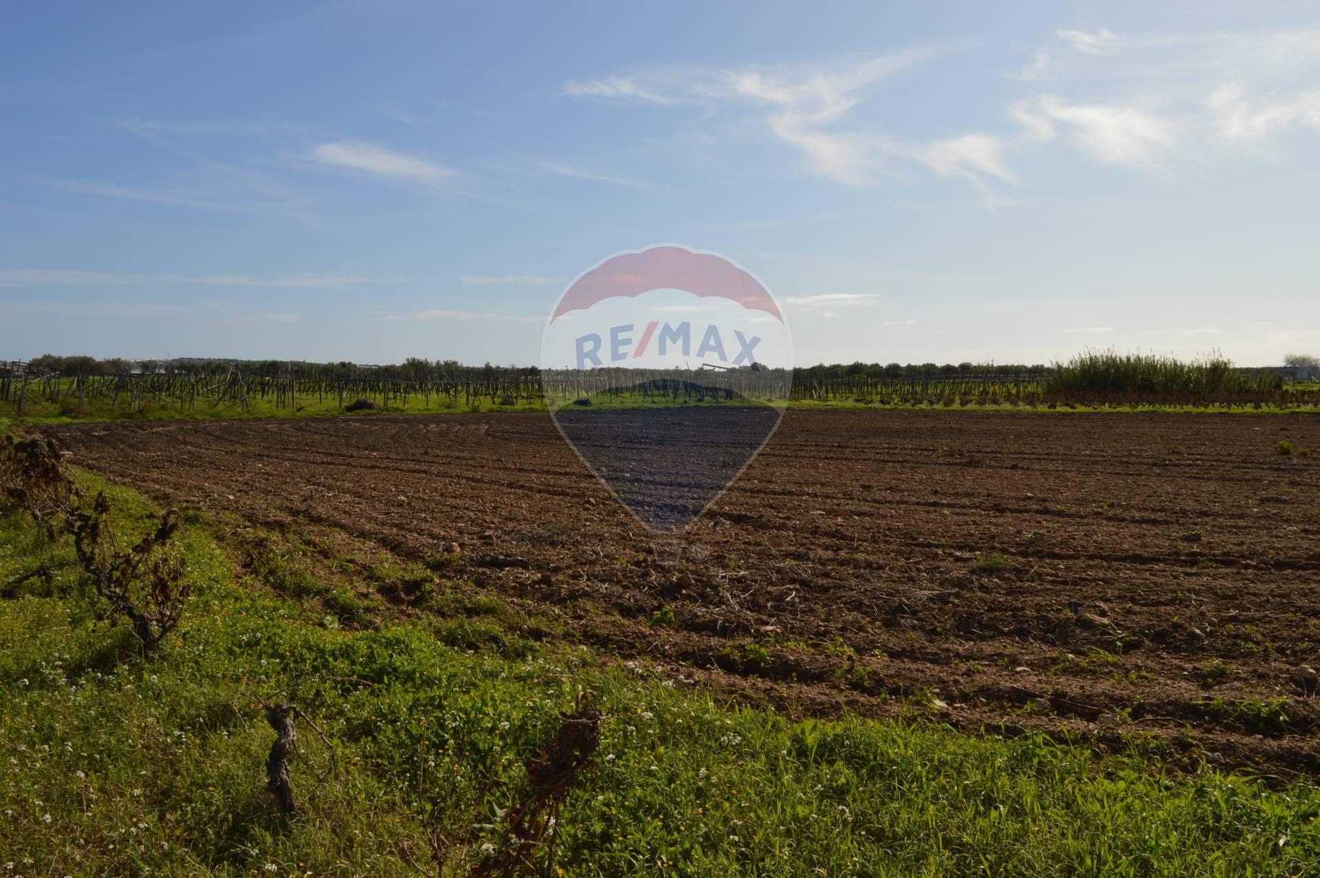 Terreno Agricolo in vendita a Noto, 9999 locali, prezzo € 27.000 | CambioCasa.it