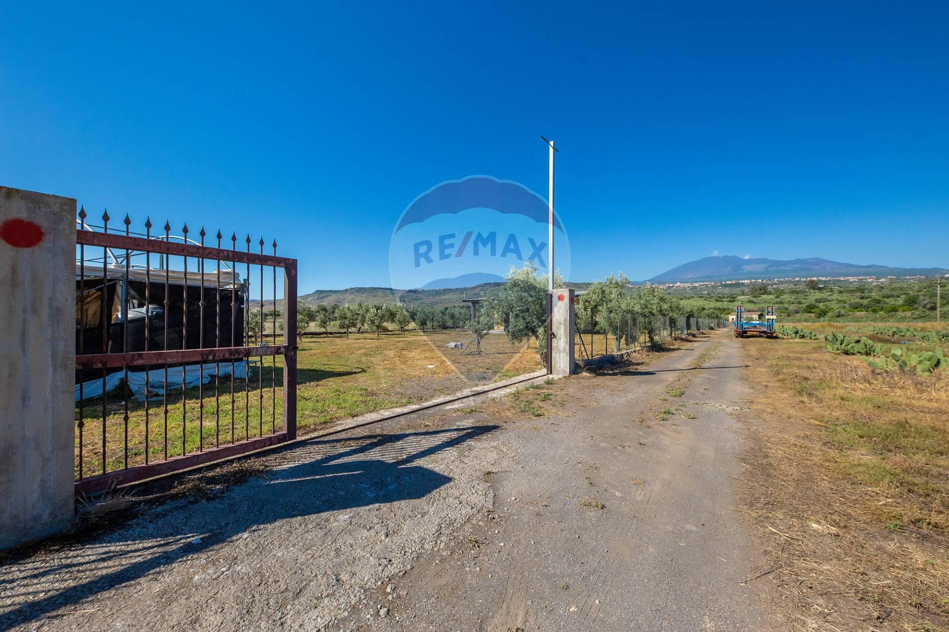 Azienda Agricola in vendita a Biancavilla, 9999 locali, prezzo € 175.000   CambioCasa.it