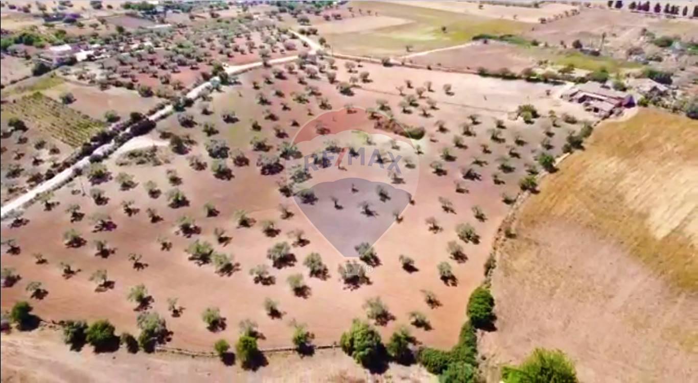 Terreno Agricolo in vendita a Vittoria, 9999 locali, prezzo € 110.000 | CambioCasa.it