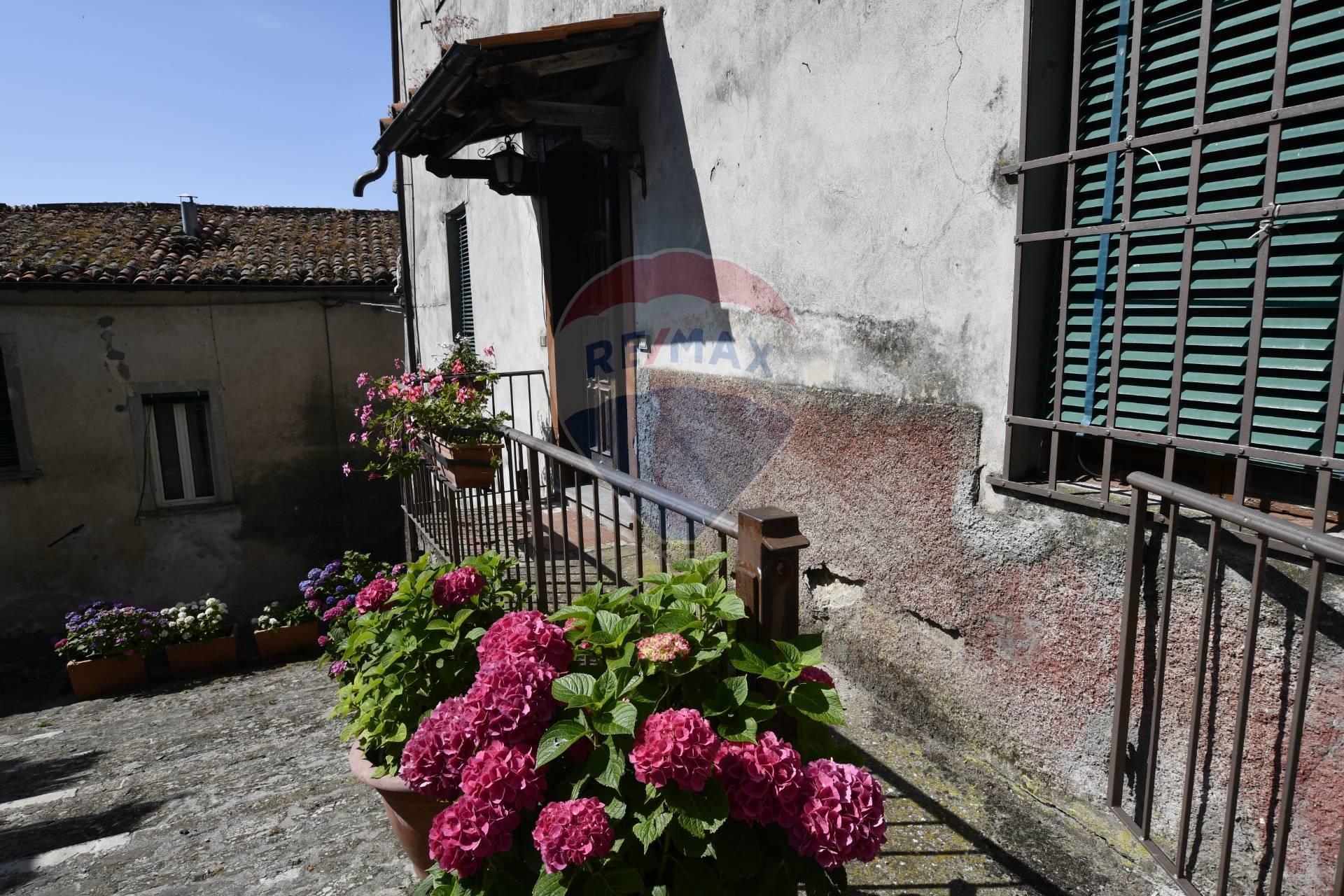 Soluzione Semindipendente in vendita a Barga, 11 locali, zona Zona: Sommocolonia, prezzo € 89.000   CambioCasa.it